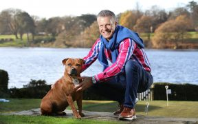 Nick and George the Staffordshire Bull Terrier