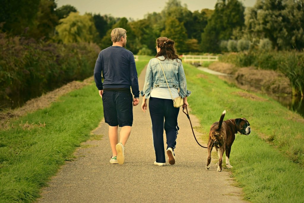 Couple and dog https://pixabay.com/photos/man-woman-couple-walking-two-3687274/