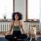 woman and dog Image - CC0 Licence